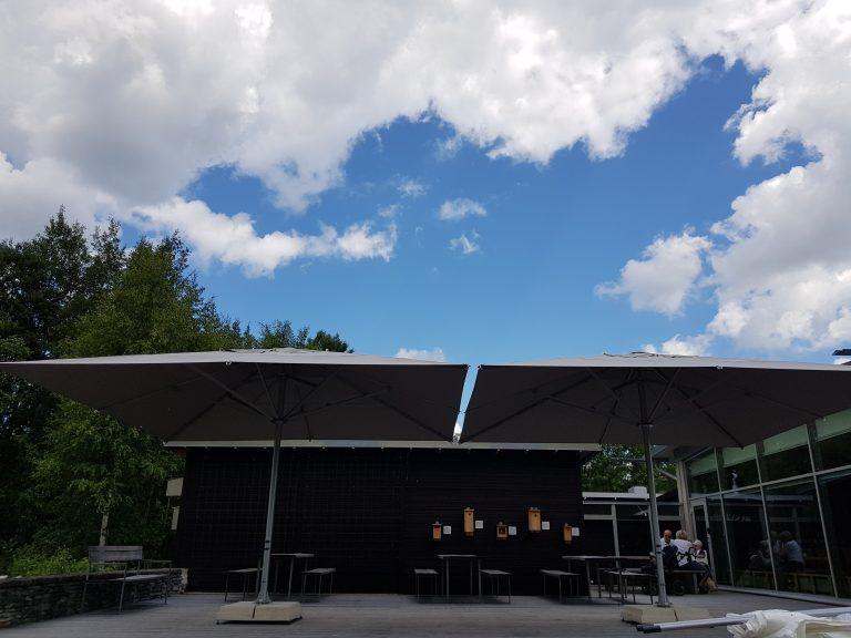 Jätte parasoller Naturens Hus Örebro